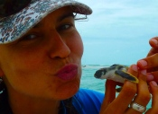 UWA PhD student Julia Reisser, with a flatback turtle hatchling